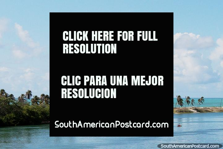 Palmeiras e uma visão da costa ao sul de Maceio. (720x480px). Brasil, América do Sul.