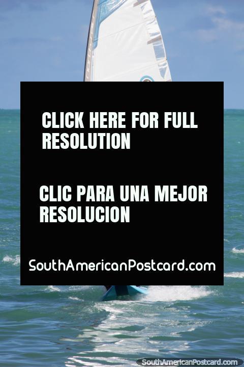 Pode alugar uma tábua que faz surfe o papagaio de papel em Praia de Pajuçara e também pequenos barcos, Maceio. (480x720px). Brasil, América do Sul.