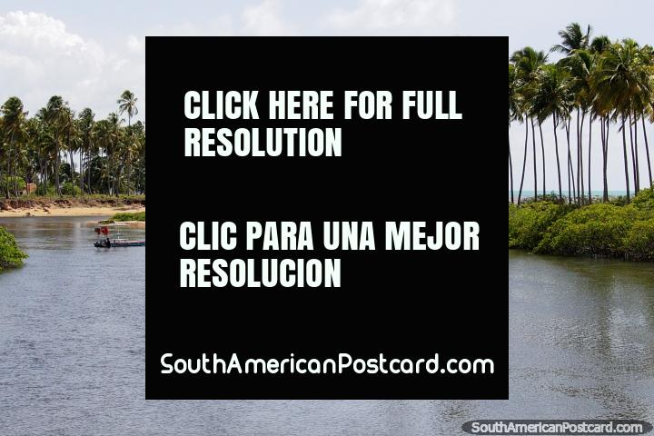 Una bonita zona de agua y palmeras al lado del mar en Japaratinga, entre Maceio y Maragogi. (720x480px). Brasil, Sudamerica.