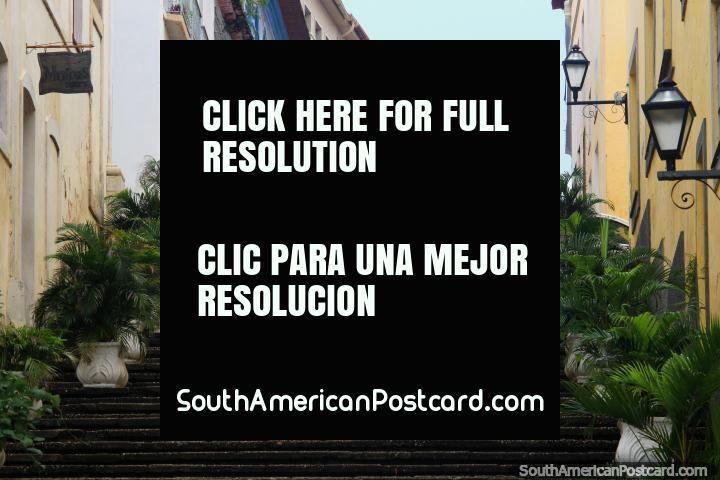 Mirando hacia arriba escaleras, farolas, helechos, edificios antiguos y un modelo, centro histórico en Sao Luis. (720x480px). Brasil, Sudamerica.