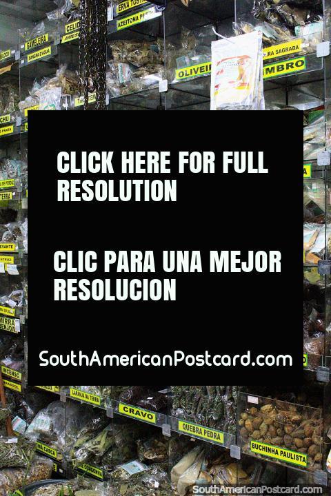 Especias y sabores, paquetes para cocinar deliciosas comidas en el Mercado Central de Belo Horizonte. (480x720px). Brasil, Sudamerica.