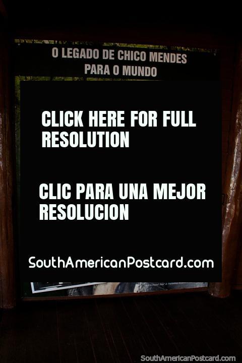 Cïrio de borracha brasileiro assassinado e o ambientalista Chico Mendes (1944-1988) no seu parque em Rio Branco. (480x720px). Brasil, América do Sul.