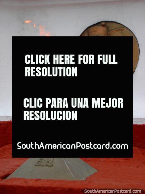 Una llama y placa en el pie de una magnífica estatua en Iquique. (480x640px). Chile, Sudamerica.