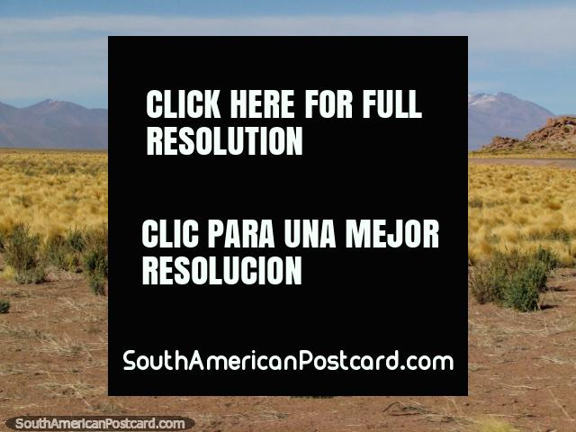 As montanhas cobertas de neve chegam a vista quando viajamos no deserto de San Pedro de Atacama. (640x480px). Chile, América do Sul.