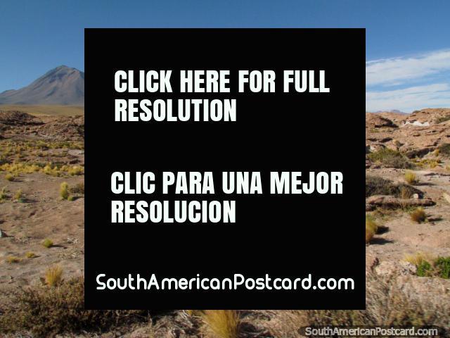 Un terreno vistoso de roca y arbustos en el desierto de San Pedro de Atacama. (640x480px). Chile, Sudamerica.