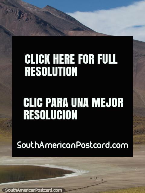 Um grupo de pessoas parece a formigas em comparação com a montanha na Lagoa Miscanti, San Pedro de Atacama. (480x640px). Chile, América do Sul.