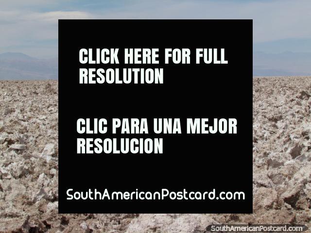 A group walk the path through a crusty salt surface at Chaxa Lagoon, San Pedro de Atacama. (640x480px). Chile, South America.