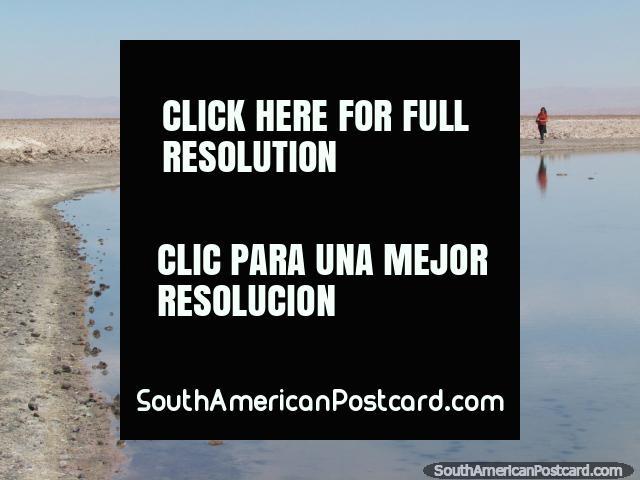 Crusty slat around the Chaxa Lagoon at San Pedro de Atacama. (640x480px). Chile, South America.