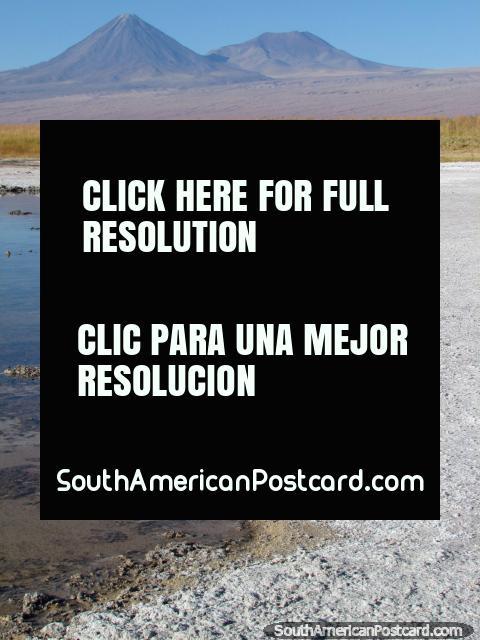 Mastigação ruidosa, triture abaixo dos seus pés, o som de sal coberto de crosta seco na Lagoa Cejar, San Pedro de Atacama. (480x640px). Chile, América do Sul.