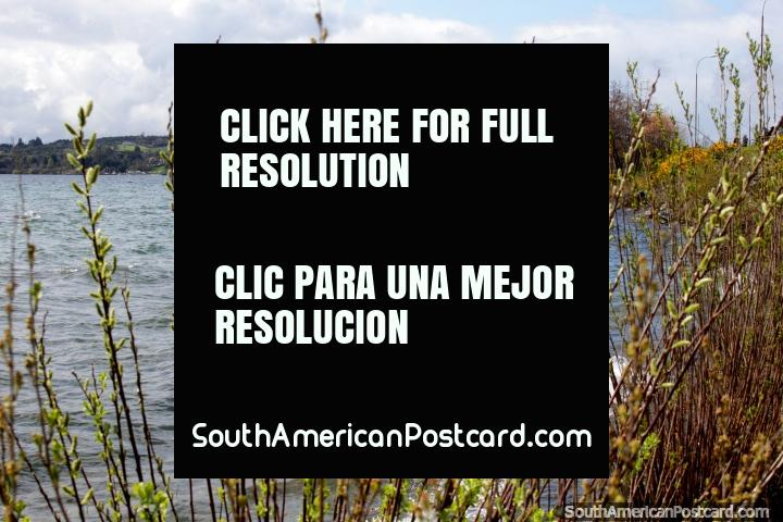 Lake Llanquihue, quiet and peaceful in the wintertime, popular in the summer months, Puerto Varas. (720x480px). Chile, South America.