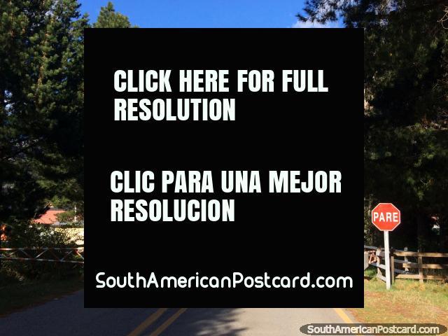 Control de pasaportes en Futaleufú, a 10km del centro del pueblo, ¡hice un aventón desde aquí! (640x480px). Chile, Sudamerica.