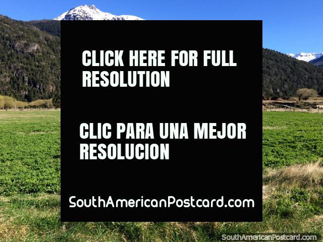 Exuberantes pastos verdes en el campo alrededor del cruce fronterizo de Futaleufú. (640x480px). Chile, Sudamerica.