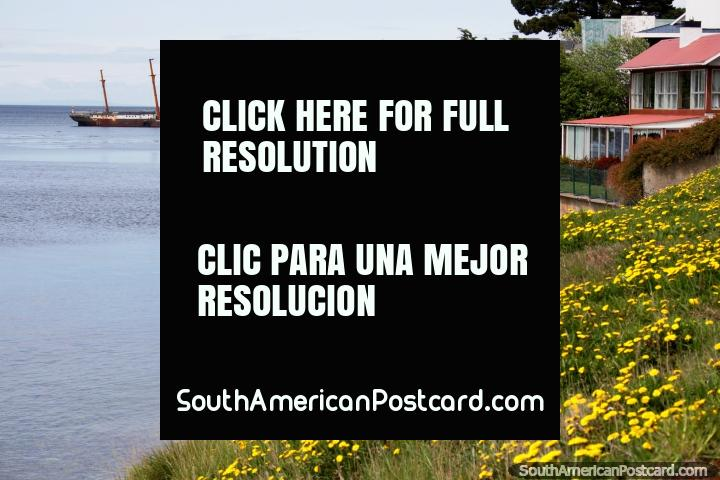 A distant shipwreck and yellow daisies on the banks of the water in Punta Arenas. (720x480px). Chile, South America.