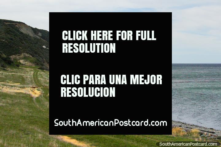 Playa pedregosa y bancos verdes junto a las aguas alrededor de Tierra del Fuego. (720x480px). Chile, Sudamerica.