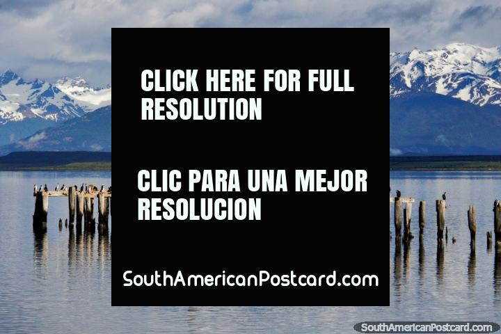 Read more about Puerto Natales