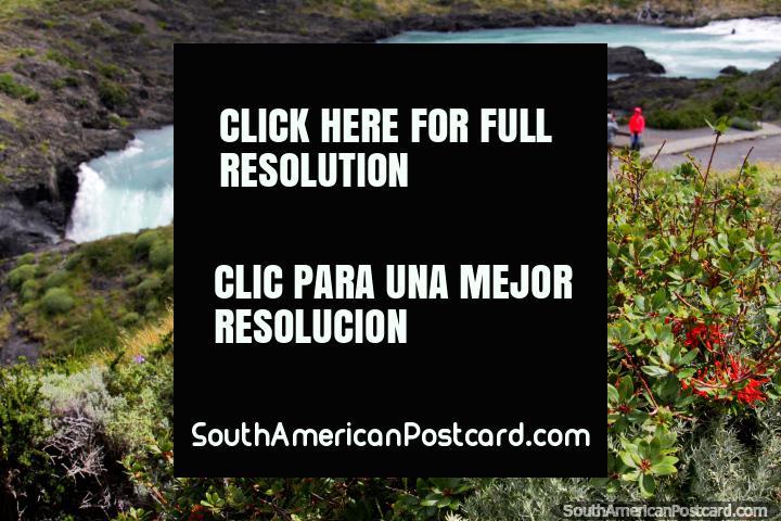 Mirador de una cascada y río que alimenta el Lago Pehoe en Torres del Paine. (720x480px). Chile, Sudamerica.