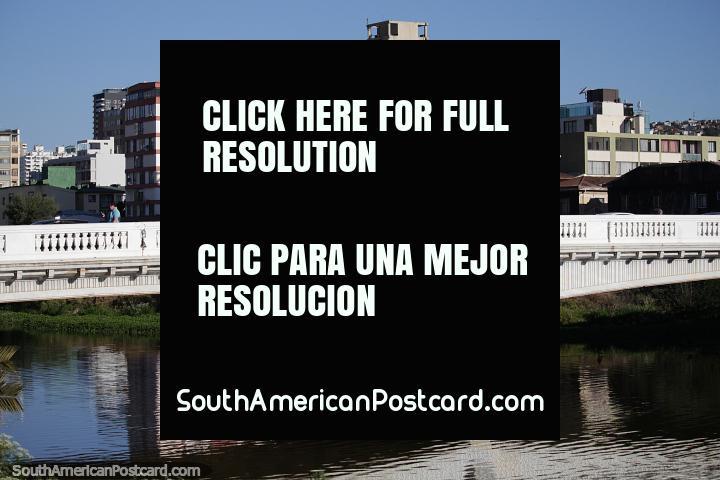 Los puentes sobre el estuario se mezclan muy bien dentro del paisaje de la ciudad en Viña del Mar. (720x480px). Chile, Sudamerica.