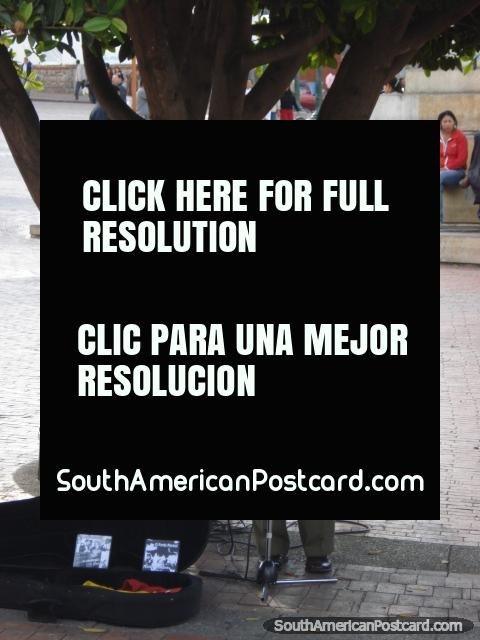 Marcelo Belardinelli toca la guitarra y canta en Pasto plaza. (480x640px). Colombia, Sudamerica.