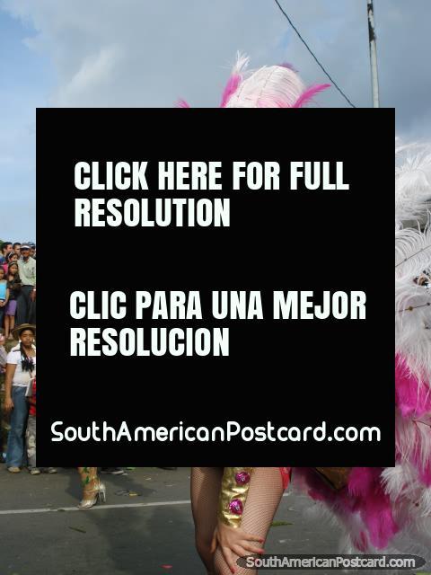 Mujeres con trajes de la pluma en el desfile de la flor en Medellín. (480x640px). Colombia, Sudamerica.