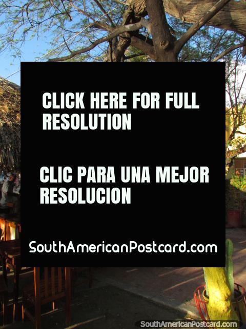 Os restaurantes em Taganga são todos existentes ao ar livre. (480x640px). Colômbia, América do Sul.