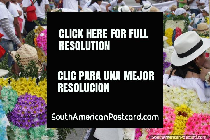 The Silleteritos de Gaira carry flowers on theirs backs, a tradition, Festival of the Sea, Santa Marta. (720x480px). Colombia, South America.