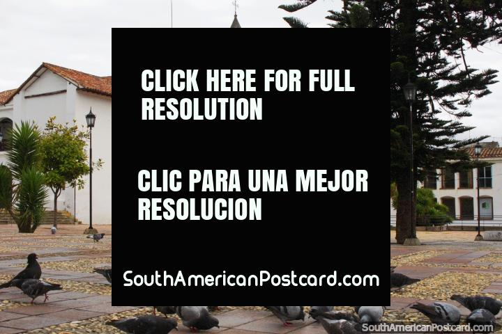 Parroquia de San Francisco em Tunja, praça pública com pombos, arcadas e telhados vermelho cobertos com telhas. (720x480px). Colômbia, América do Sul.