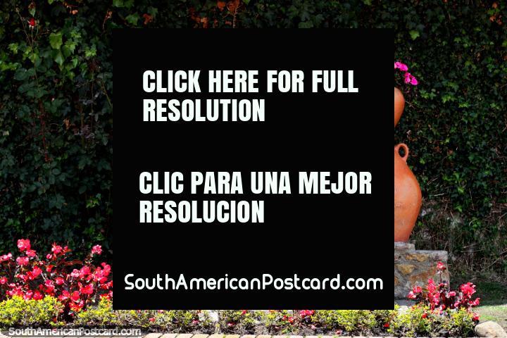 Grandes macetas de cerámica con flores rosadas en jardines alrededor de la plaza en Guatavita. (720x480px). Colombia, Sudamerica.