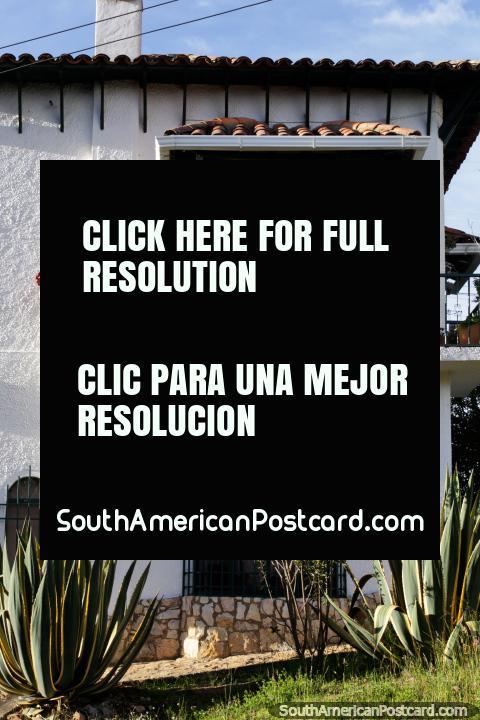 Casa tïpica em Guatavita pintada de branco com um balcão de fábricas de pote e telhado coberto com telhas. (480x720px). Colômbia, América do Sul.