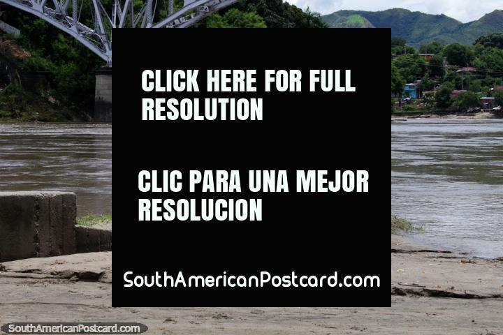 Cegonha branca na borda do Rio de Magdalena em Girardot, procurando comida. (720x480px). Colômbia, América do Sul.