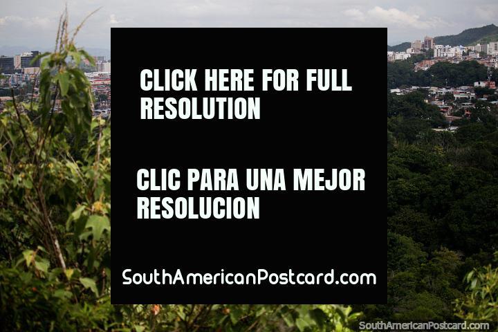 A cidade de Ibague na distância, examine do Miradouro o ponto de vigia de Sindamanoy em Jardins botânicos de San Jorge. (720x480px). Colômbia, América do Sul.
