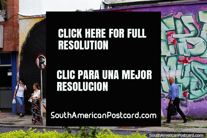 Girl plays flute, street art with musical themes all around Ibague, the music capital. (720x480px). Colombia, South America.