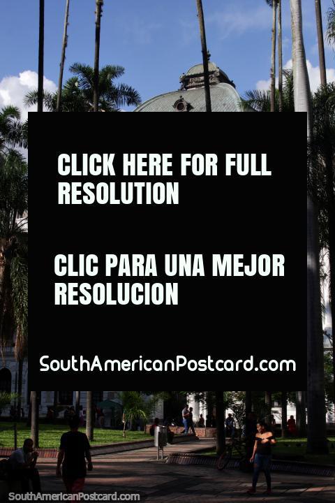 Palácio nacional e Palácio de justiça em Cali, belo edifïcio branco junto de Praça Cayzedo. (480x720px). Colômbia, América do Sul.