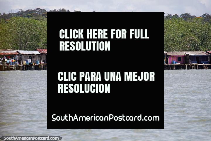 As casas de cabana em pernas de pau fazem-se da madeira com telhados de ferro ondulados ao longo da costa de Buenaventura. (720x480px). Colômbia, América do Sul.