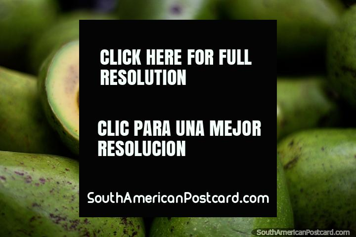 Avocado, nothing more, nothing less, but it is from Manizales! (720x480px). Colombia, South America.
