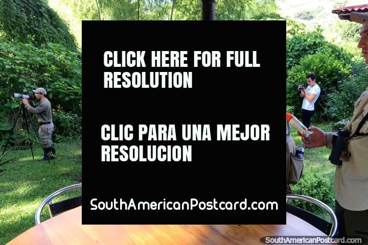 Fotógrafos serios de observación de aves de Costa Rica en la Reserva Natural de Observación de Aves Tinamu en Manizales. (720x480px). Colombia, Sudamerica.