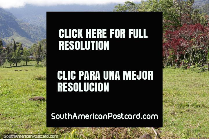 Hermosos paisajes y colinas rodean a Jardin, un lugar para explorar la naturaleza. (720x480px). Colombia, Sudamerica.