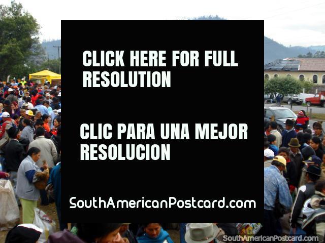 Pela meia manhã no sábado o mercado dos animais em Otavalo é muito ocupado. (640x480px). Equador, América do Sul.