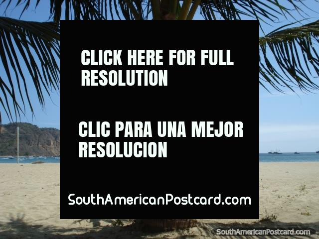Laying in a hammock under a palm tree at Puerto Lopez beach. (640x480px). Ecuador, South America.