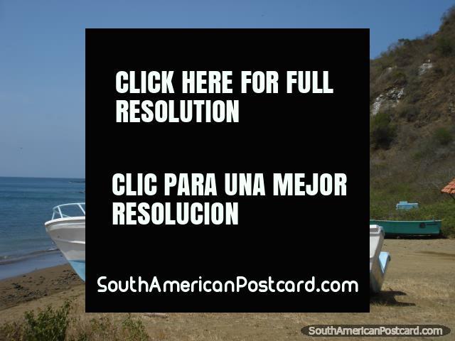 On Isla de la Plata off the coast of Puerto Lopez. (640x480px). Ecuador, South America.