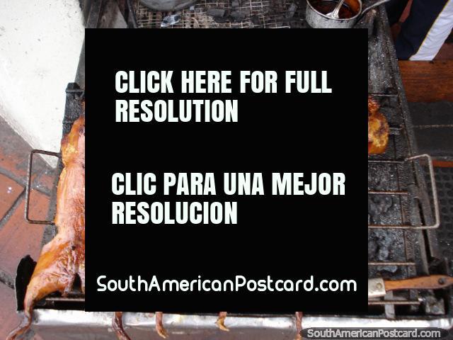 Tenía cobayos para animales domésticos una vez, comen ellos aquí, Banos. (640x480px). Ecuador, Sudamerica.