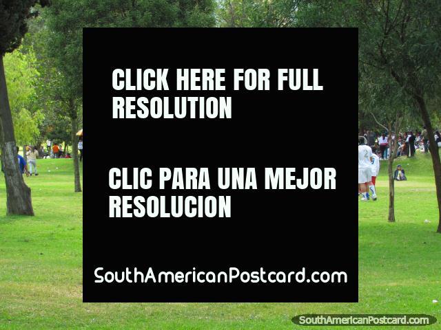Locals of Quito play soccer in park El Ejido in Quito. (640x480px). Ecuador, South America.