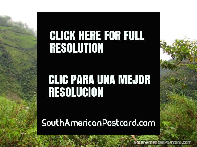 O caminho entre Palanda e Zumba que funciona ao longo de espinhaço de mato acima de rio. (640x480px). Equador, América do Sul.