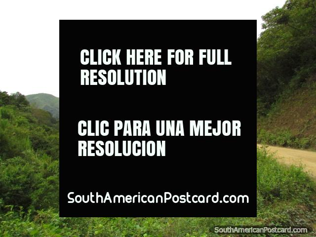 Colinas de la selva verdes al norte de Zumba. (640x480px). Ecuador, Sudamerica.