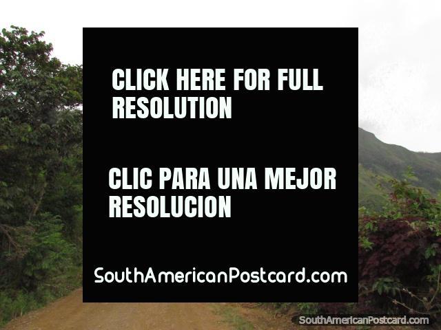 O caminho de Zumba a Pucapamba a borda de Peru. (640x480px). Equador, América do Sul.