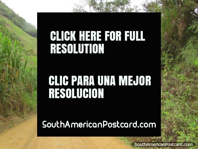 Zumba a Pucapamba toma 1 hora de táxi. (640x480px). Equador, América do Sul.