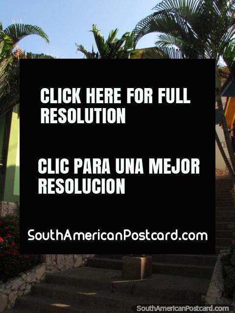 Casas verdes e amarelas, iluminação de rua e palmas em colina de Santa Ana, Guayaquil. (480x640px). Equador, América do Sul.