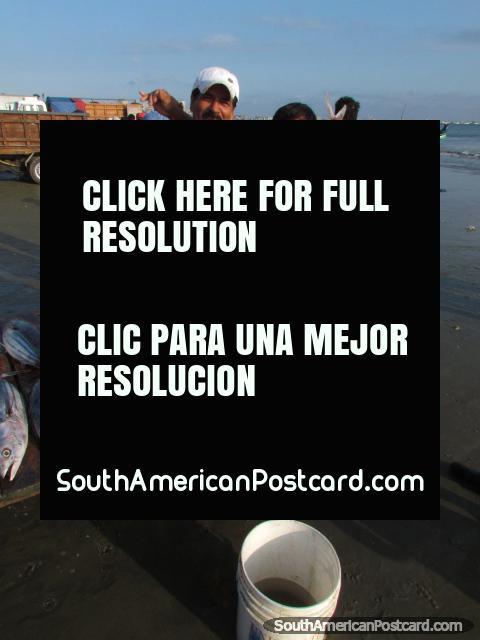 2 fishermen pose with tuna at Tarqui Beach, Manta. (480x640px). Ecuador, South America.
