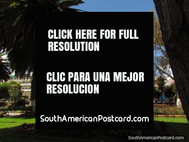 Parque San Francisco, a shady park in the historic area of Latacunga. (640x480px). Ecuador, South America.