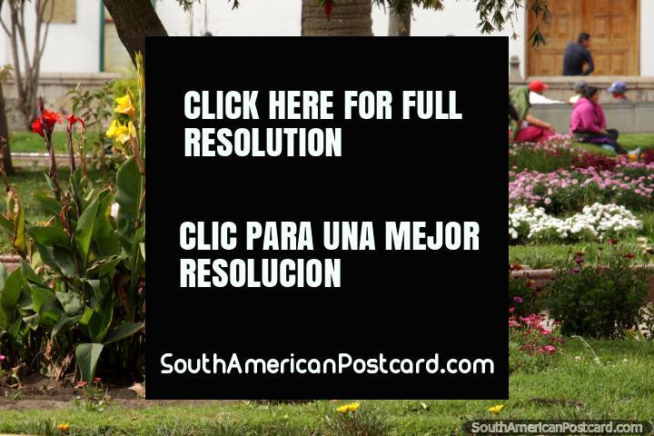The gardens and colorful flowers at Parque Maldonado in central Riobamba. (720x480px). Ecuador, South America.