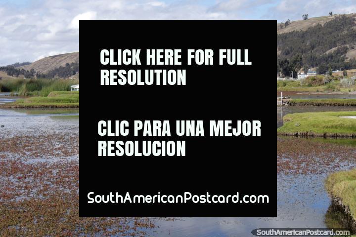 People walk across a bamboo bridge to a grass island at Colta Lagoon. (720x480px). Ecuador, South America.